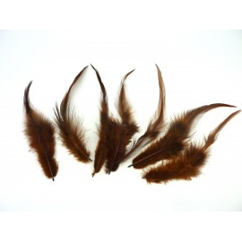 7 plumes teinte marron approximativement 13-17 cm