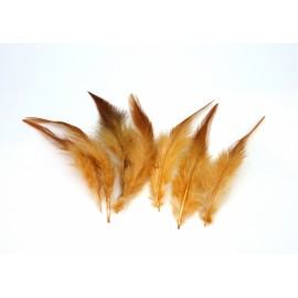 R-7 plumes teinte marron clair approximativement 10-13 cm
