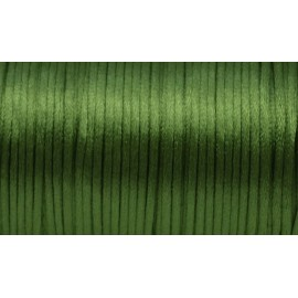 5m Cordon Queue de rat 2mm de couleur vert avocat brillant