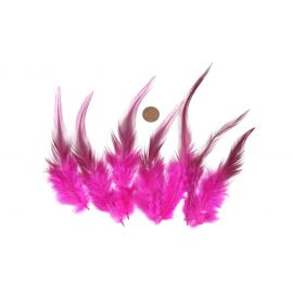 Plume teinte rose vif approximativement 8-16cm