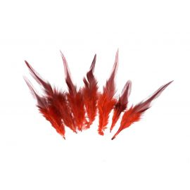 7 plumes teinte rouge approximativement 8-15 cm