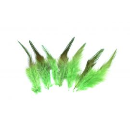 7 plumes teinte vert vif approximativement 9-14 cm