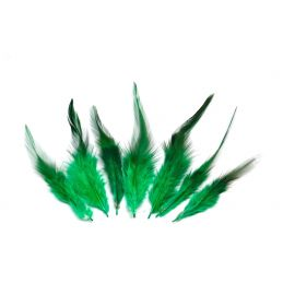 7 plumes teinte vert approximativement 8-15cm