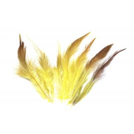 7 plumes teinte jaune et marron approximativement 9-16 cm