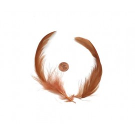Plume marron rouille pour customisation